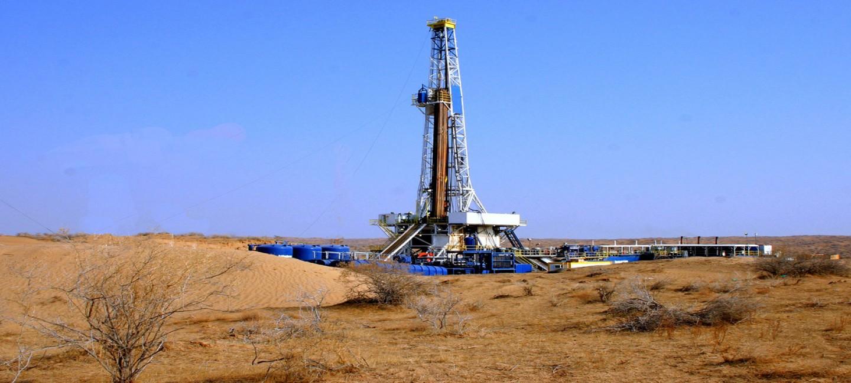 Нефтегазовое месторождение Узынада: потенциал и перспективы